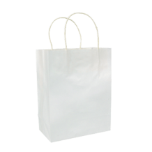 Paper Shopping Bag 5 x 3 x 8""